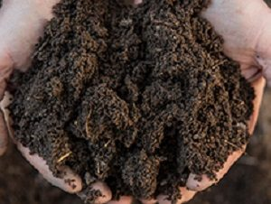 Do You Need Soil Delivery in Reisterstown?
