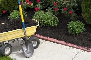 Preparing Your Forest Hill Yard for Topsoil