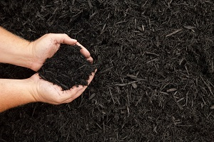 The Basics of Winter Mulching in Monkton