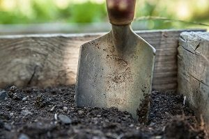 3 Easy Ways to Determine Soil Health in Perry Hall