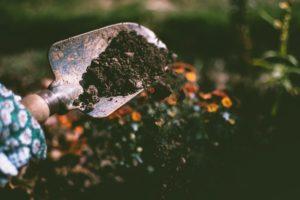 Take Advantage of Soil Delivery in Sparks