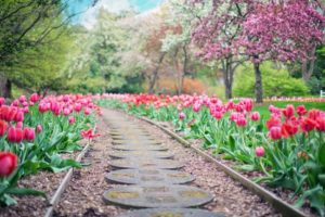 Building a Decorative Stone Walkway for Your Lutherville Home