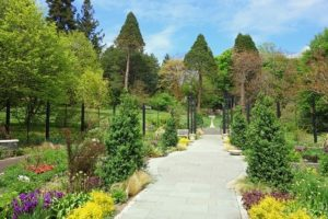 Creating a Natural Stone Walkway in Monkton