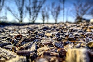 Types of Mulch to Use in Abingdon