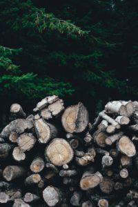 Comparing Firewood in Overlea: Hardwood vs. Softwood