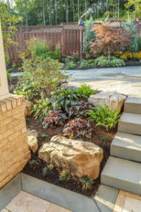 Mulch and More: 4 Ways to Keep Your Garden Growing Throughout Summer