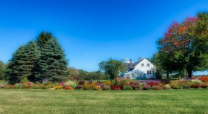 Grab Some Mulch and Lean Into Fall Garden Prep