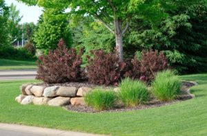 Save Time with Landscape Supply Delivery and Low-Maintenance Landscaping